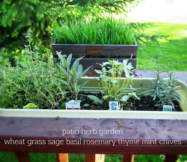 Kitchen Herb Gardens That Will Make Cooking Wonderful: Best 25+ Patio Herb Gardens Ideas Only On Pinterest