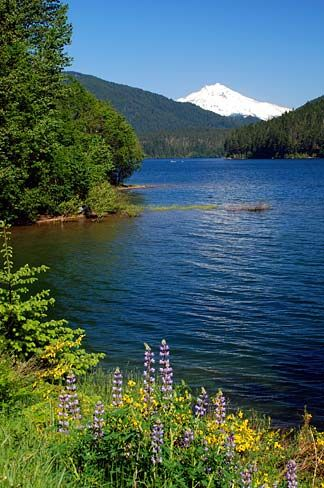Miss the cabin there! Detroit Lake, Oregon