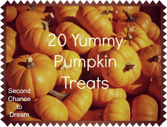 20 Yummy Pumpkin Treats to Try! Via http://www.secondchancetodream.com @Barb Camp -Second Chance to Dream