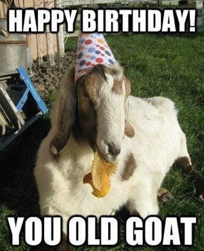 The 25+ Best Old Man Birthday Meme Ideas On Pinterest
