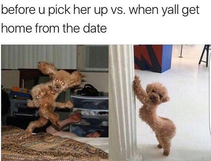 is kenya moore dating