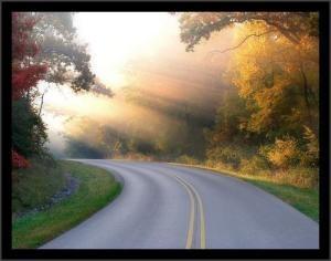 Encontra o teu caminho.....