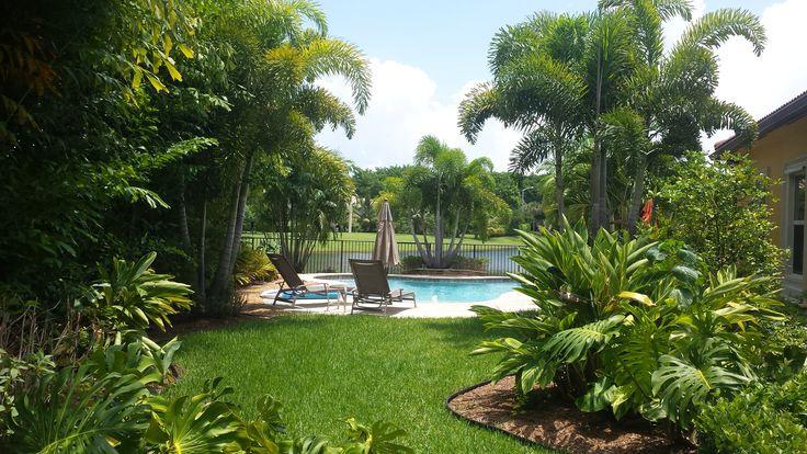 Hawaiian Backyard Fights : Tropical backyard & pool landscape Universal Landscape, Inc www