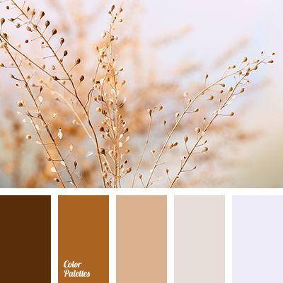 Color Palette #2733                                                                                                                                                                                 More
