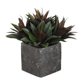 Artificial Succulents Desk Top Plant in Pot