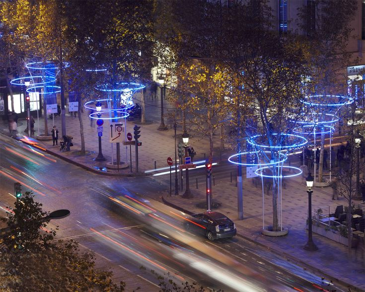 TREE RINGS | ACT lighting design