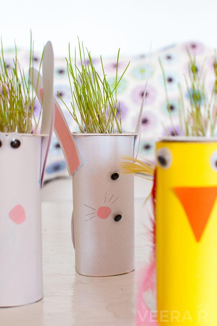 Istuta rairuoho pieneen rahkapurkkiin ja askartele helpot ja hauskat eläimet vessapaperirullista ja värillisistä papereista.
