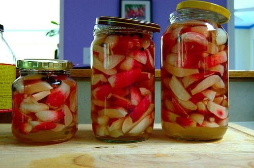 Pickled Radishes: Quick Pickled, Canning Recipes, Food Pickled Bottle, Canning Pickled Preserves, Fresh Pickled, Pickled Radish, Radish Recipes, Radish Pickled, Vegetarian Recipes