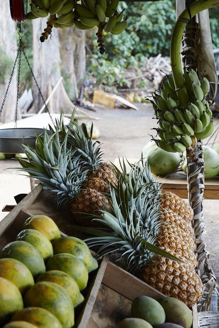 tropical island fruits.
