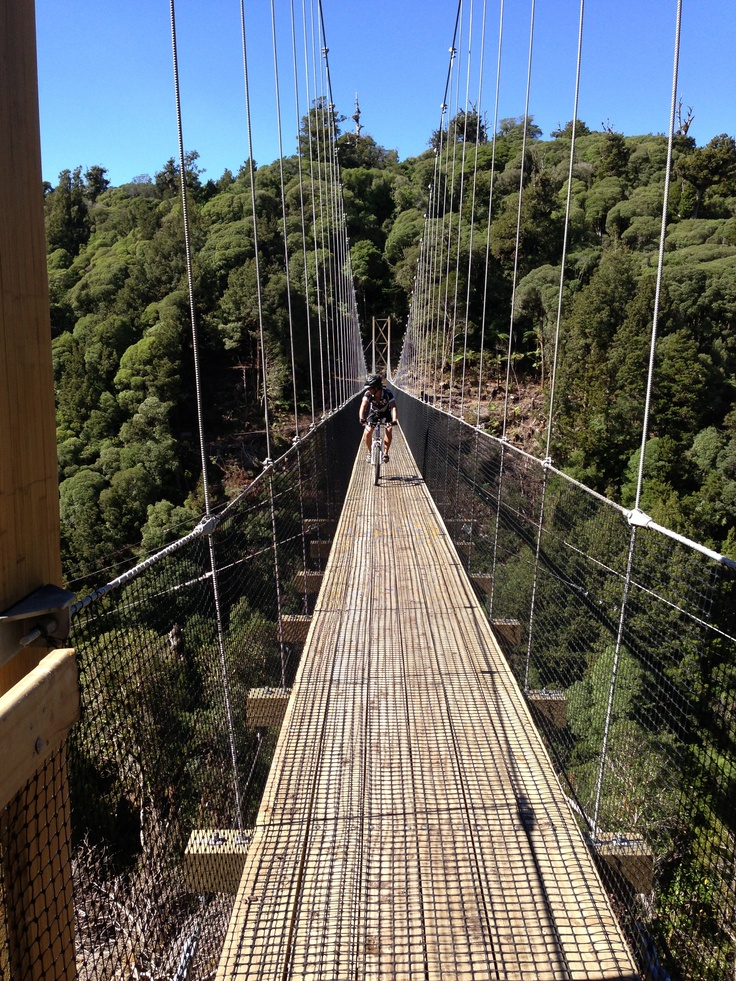 Matt riding over one of the many magnificent bridges on the Timber Trail