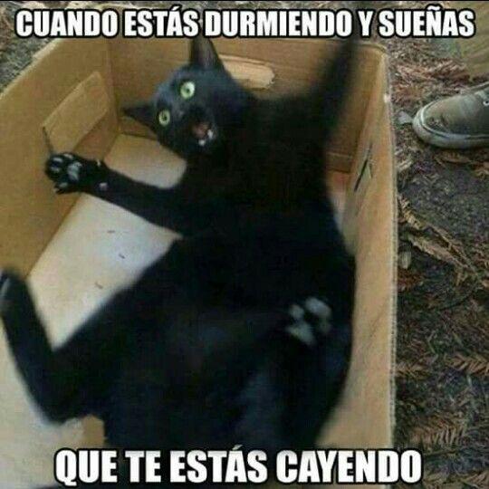 Jajaja...Hey! Esperen...! A mi ya me paso.  Y me di un buen Madrazo.