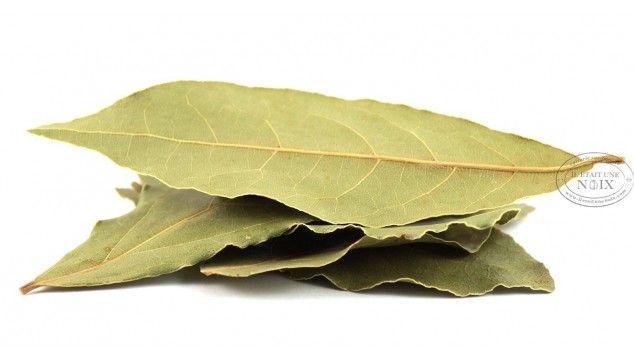Feuille de laurier : brûlez-la pour éliminer la fatigue et les tensions. Les lauriers sont utilisés en horticulture, comme des arbres de couverture, dans
