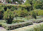 Diseño con plantas: árboles, arbustos, setos, borduras, rosas, trepadoras