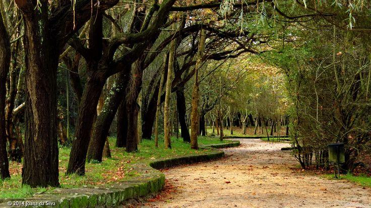 Parque da Cidade do Porto, Portugal