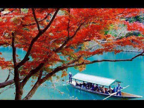 KYOTO JAPAN 京都観光・嵐山の紅葉の名所 Autumn Leaves in Kyoto - Arashiyama, Sagano 嵯峨野トロッコ、天龍寺、常寂光寺、宝厳院、日本の紅葉 - YouTube