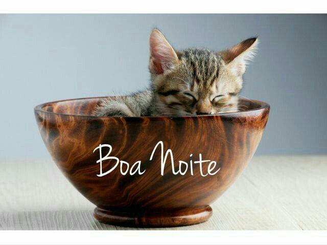 Boa Noite Engracado: Pin De Elza Rodrigues Em Frases Soltas