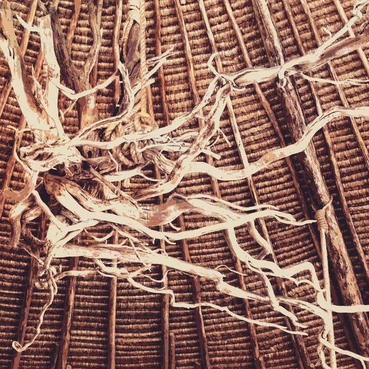 📷 @lisa_salus '#giliasahan.com #giliasahanresort #dalucianoagiliasahan #woodenart #woodart #alangalang #wood #ceiling #beachrestaurant #naturalinterior #interiordecor #giliasahanecolodge #ecodesign #ecolodge #indonesiaku'  #regram #nautilusrestaurant #driftwood #uniquehotels #exploringtheworld #ecoconscious #getoutstayout #guestpic#globe_travel #eco #secreteislands #beautifuldestinations #wonderful_places #photography #goodtimes
