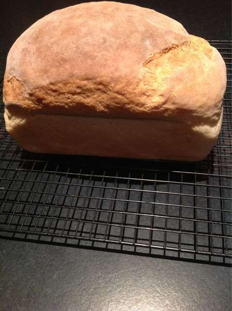 Forum Thermomix - The best Thermomix recipes and community - Bread Dough - Thermo Chef Natura Recipe Folder