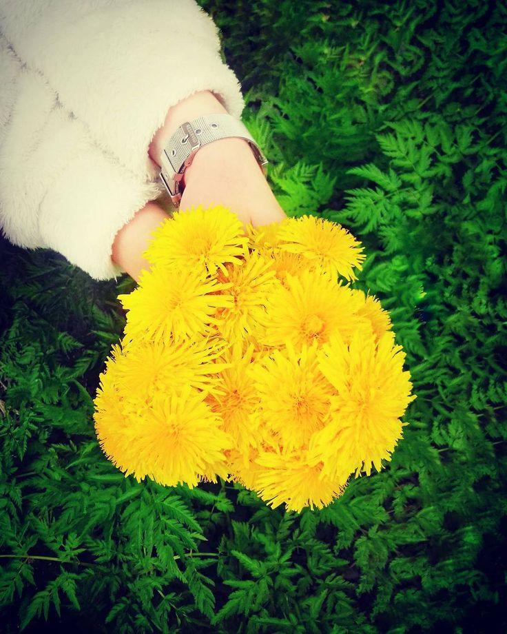 Цветочков мне в ленту Или когда ты хотела желтые нарциссы ���������� #flowers #flower #flowerstagram #flowersofinstagram #flowerslovers #flowerstyles_gf #instagramanet #instaflower #instaflowers #instatag #flowerstalking #floweroftheday #flowerporn #flowermagic #flowerpower #букет #букеты #букетик #букетцветов #инстаграманет #цветыжизни #инстатаг #букетвподарок #букетдня #цветы #цвет #цветочки #цветок #цвета #цветочек http://gelinshop.com/ipost/1521692050256762202/?code=BUeItuBFxVa