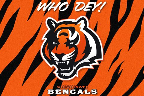 Cincinnati Bengals (affectionately known as the Bungles)