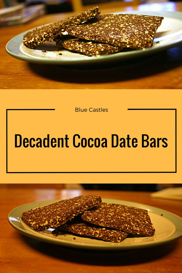 These tasty date bars look like a great mid day snack! I can't wait to try them!