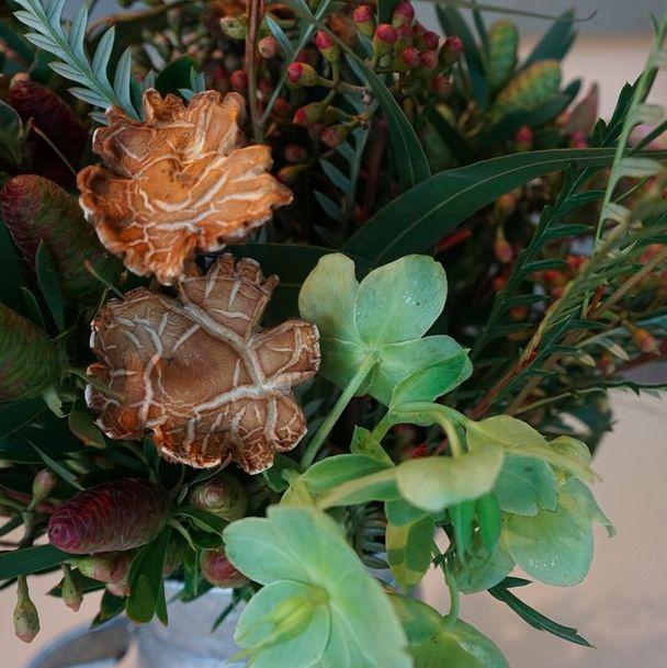 Found wild mushrooms add texture to this unusal bouquet designed by Dundee Butcher of Russian River Flower School. #mushrooms #texture #Hellebores #gravelia #eucalyptus #FlowerSchool #Sonoma