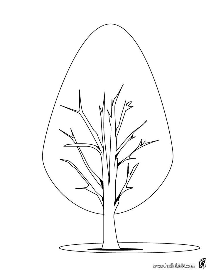 cypress coloring page this cypress coloring page is the most beautiful among all coloring sheets you dont need your crayons anymore