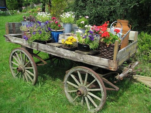 Old wagon full of flowers by Gmomma