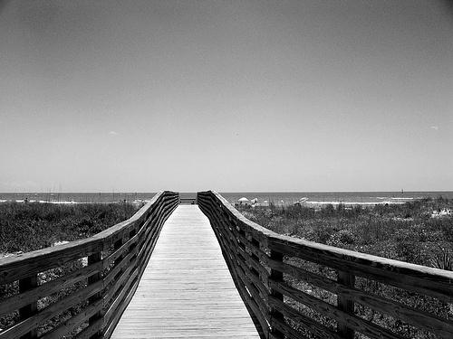 Honeymoon Island, Florida
