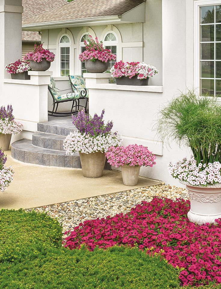 1761 Best Container Gardening Ideas Images On Pinterest