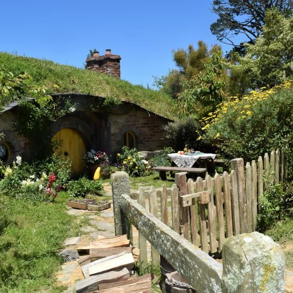 Save money on the Hobbiton Movie Set & Rotorua Thermal Wonderland Combo tour.  Our experts have personally selected the best Tauranga shore excursions.  Call us for personalized service and a wide range of Australia & New Zealand shore excursions.