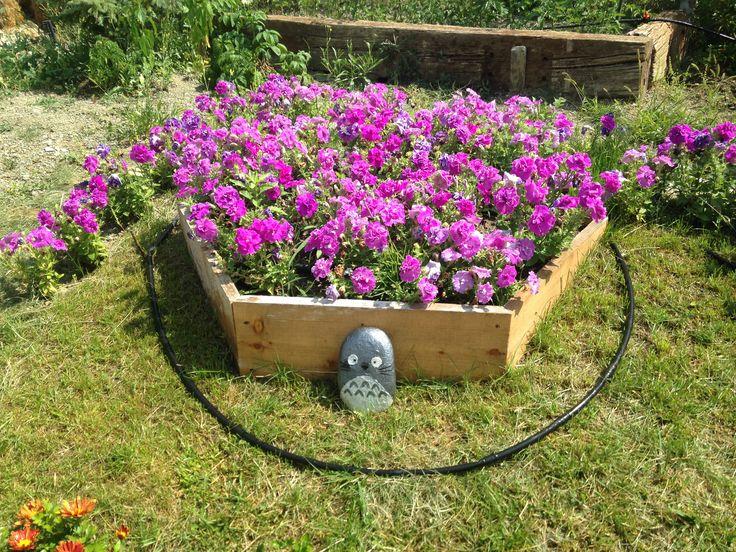 Yükseltilmiş çiçek yatağı-Altıgen saksı ve içinde nefis petunyalar:)