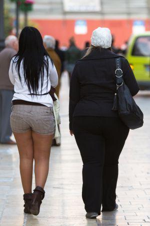 A menor nivel educativo, más obesidad - El País