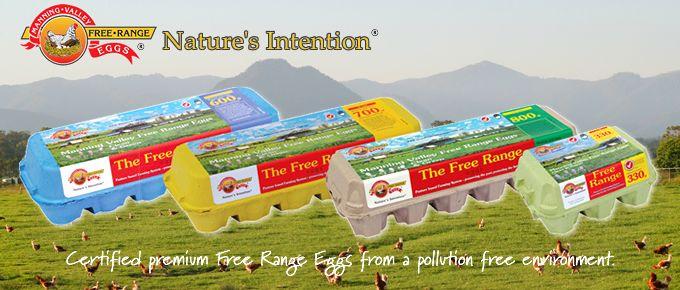 Manning Valley Free Range Eggs :)