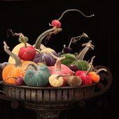 hot skwash velvet pumpkins spring poster.jpg