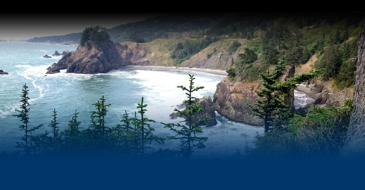Curry County, home to Oregon's most beautiful Coastline, find Oregon Tourism, Parks, visitor information all on travelcurrycoast.com.