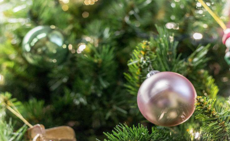 Dicas para passar um Natal mais verde