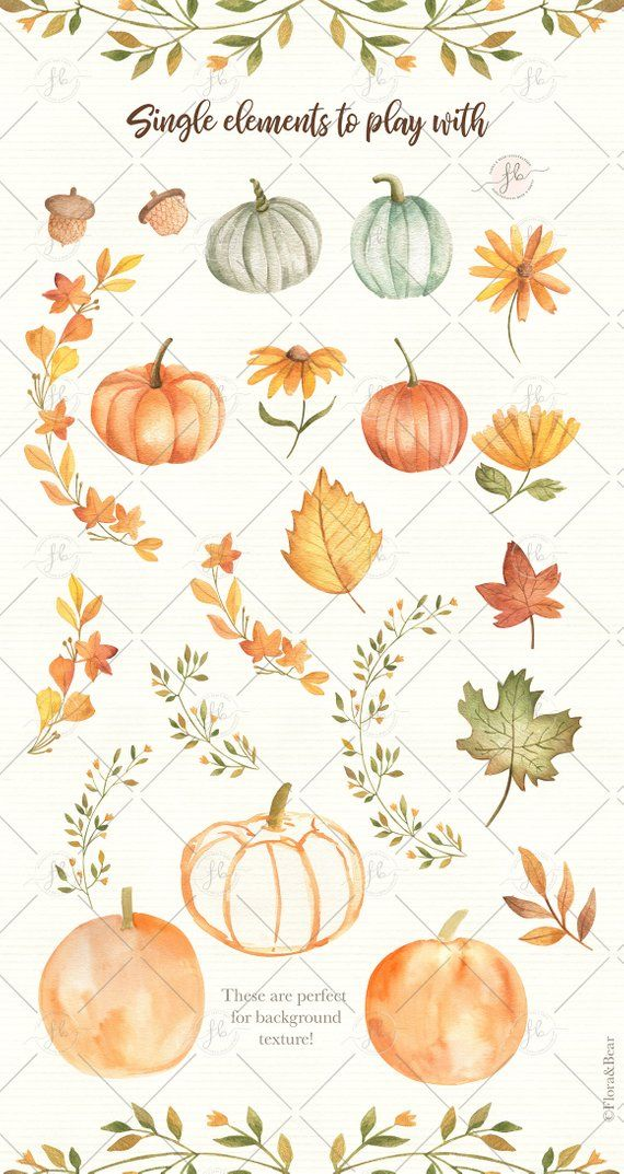 Autumn Watercolor Clipart Fall Clipart Pumpkin Printable Digital