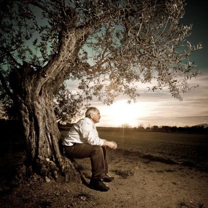 Bildergebnis für Carlos Castaneda - Die Lehren des Don Juan Matus