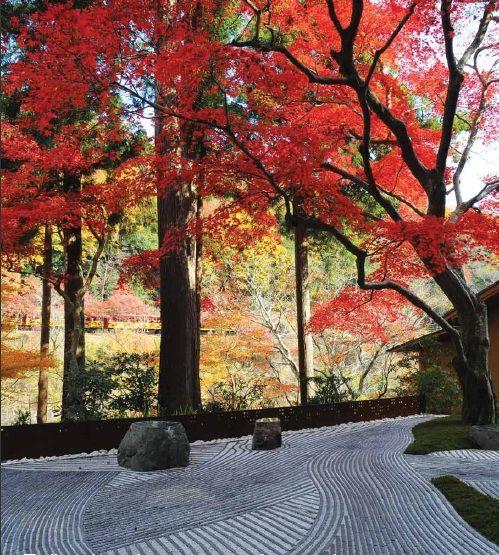 Japanese Zen Garden. Such beauty and simplicity. #serene #nature