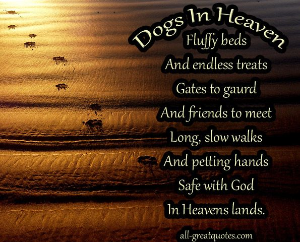 Dogs In Heaven Quotes Dogs In Heaven Fluffy Beds And