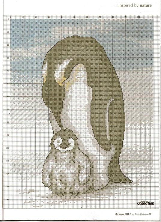 les 58 meilleures images du tableau pingouin manchot sur pinterest pingouin manchot. Black Bedroom Furniture Sets. Home Design Ideas