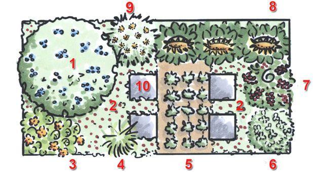 ber ideen zu pflanzplan auf pinterest sch ner garten sch ne g rten und stauden. Black Bedroom Furniture Sets. Home Design Ideas