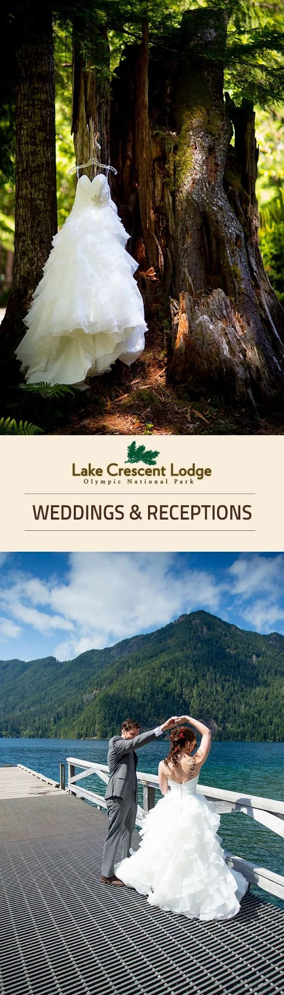 Planning A Wedding Or Social Event Olympic National Park Forest Has Place For
