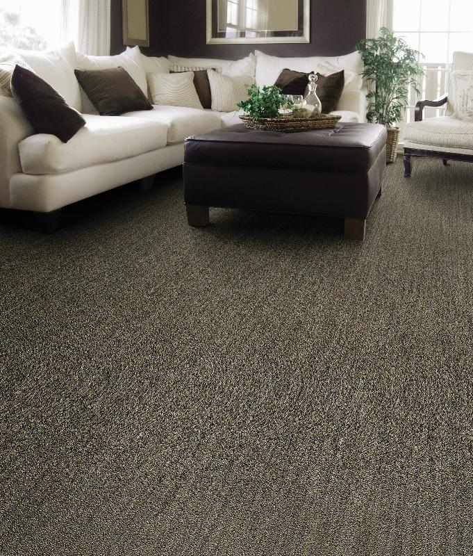 Beaulieu of america indoor outdoor carpet carpet review for Beaulieu laminate flooring
