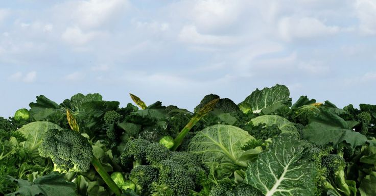 10 Foods That Beat Kale In The Superfoods List ==>