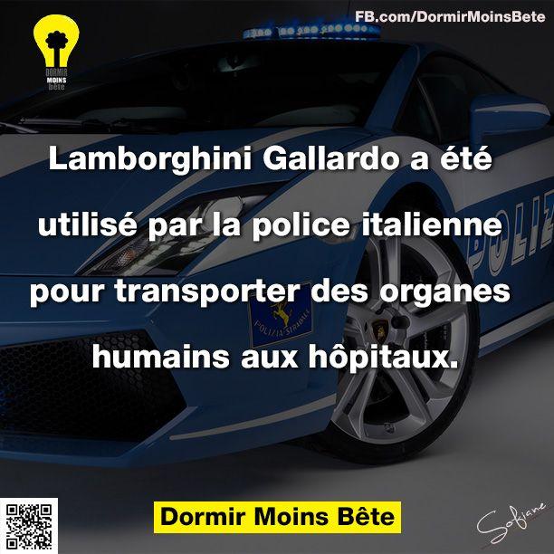 Lamborghini Gallardo a été utilisé par la police italienne pour transporter des organes humains aux hôpitaux.