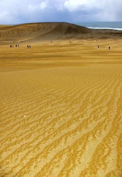 Tottori Sand Dunes, Japan 鳥取砂丘