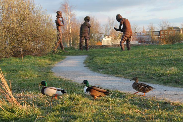 park in utrecht, 3 ducks 3 art-statues