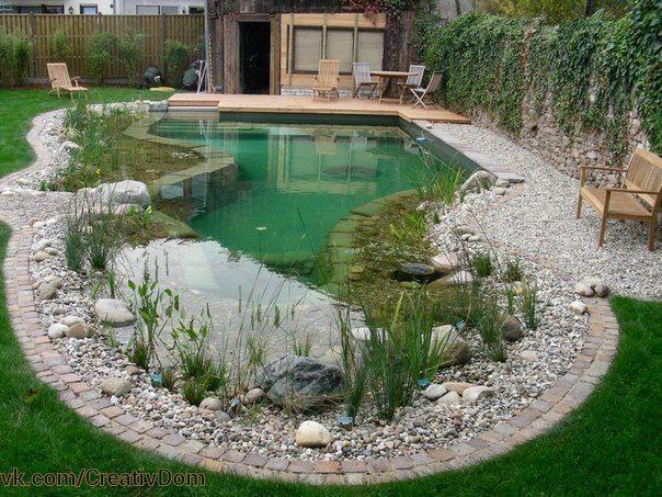 Пруд-бассейн во дворе.